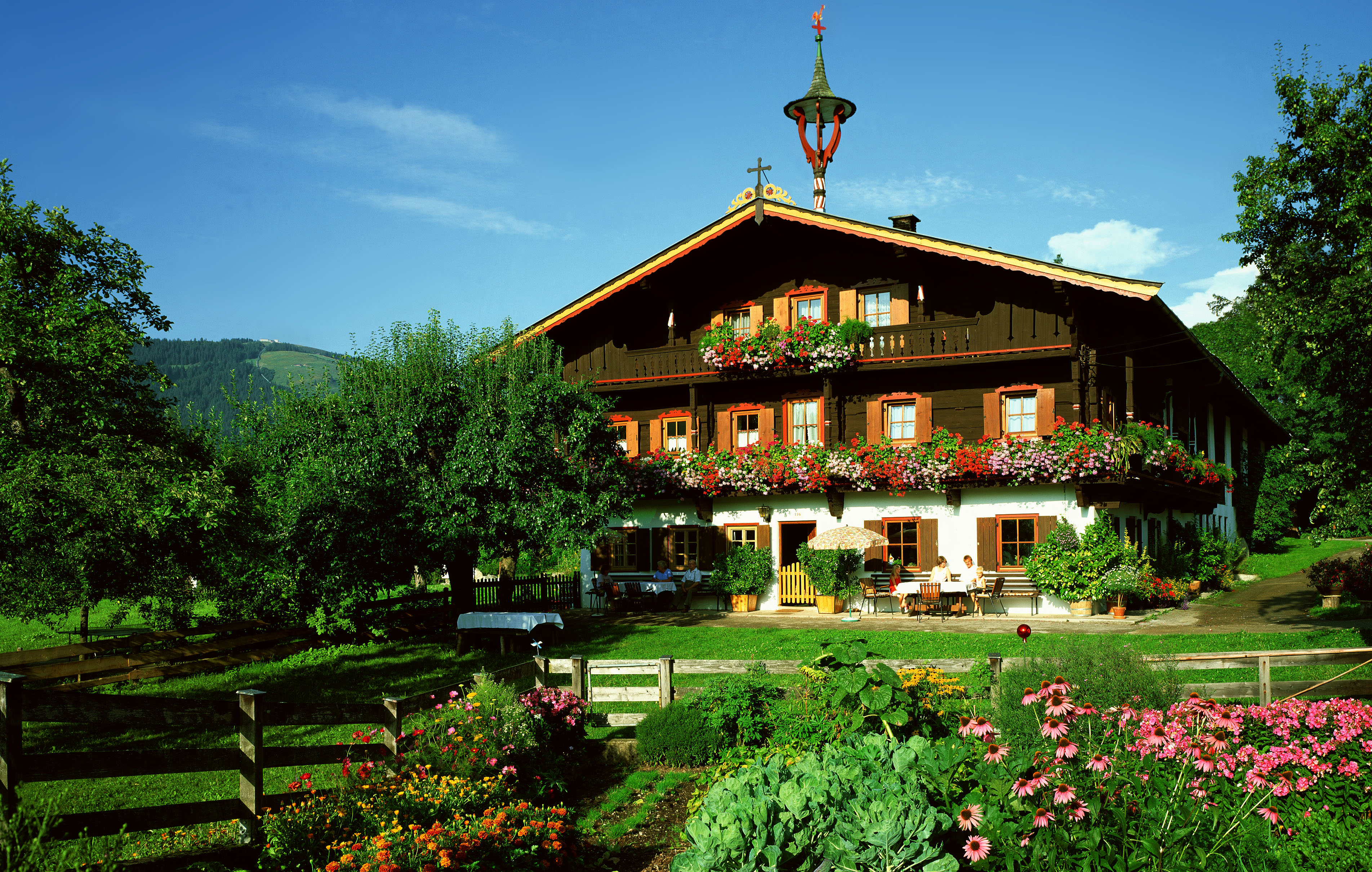 Tiroler Bauernhof