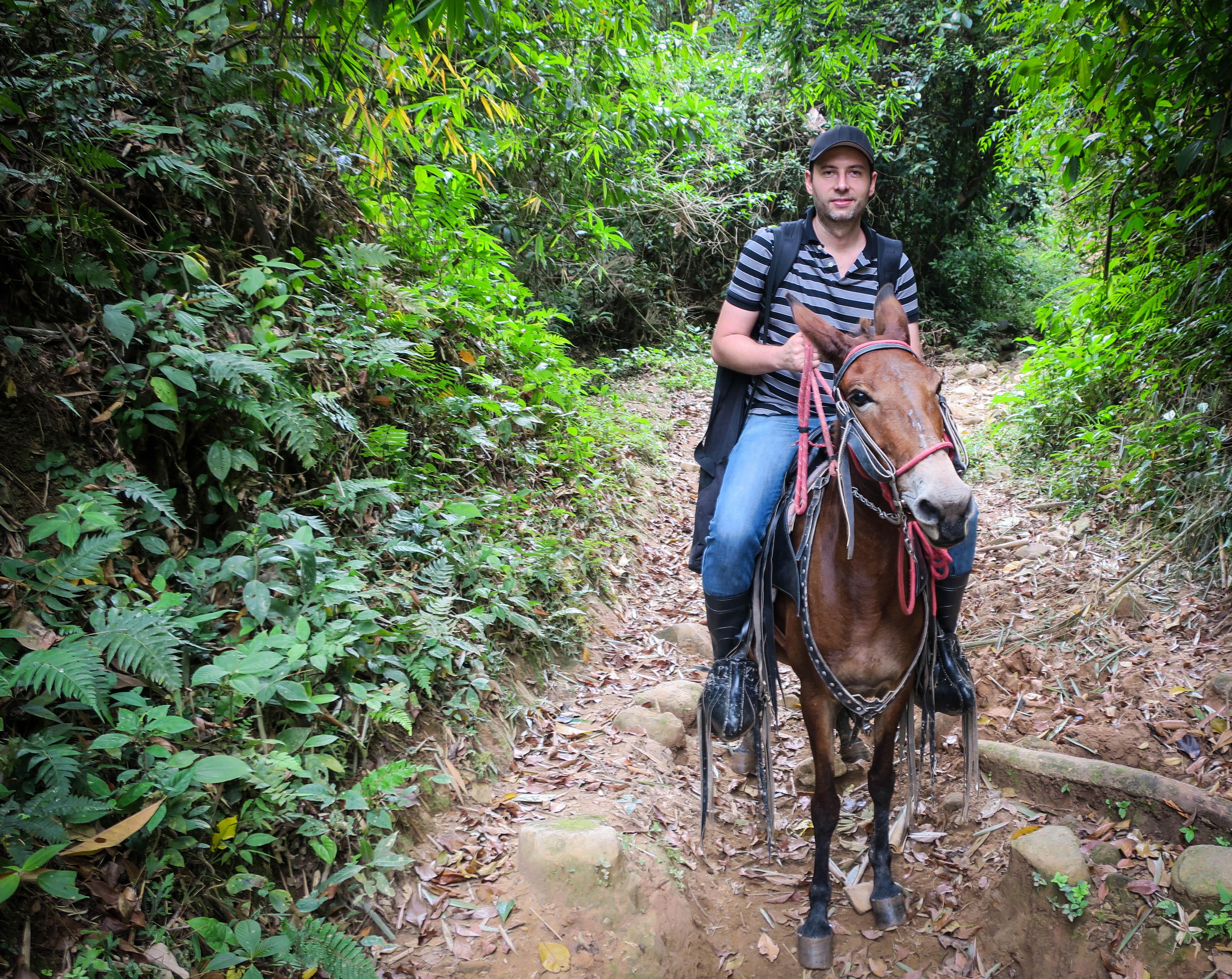 Klaus Brunner, Esel, Nicaragua