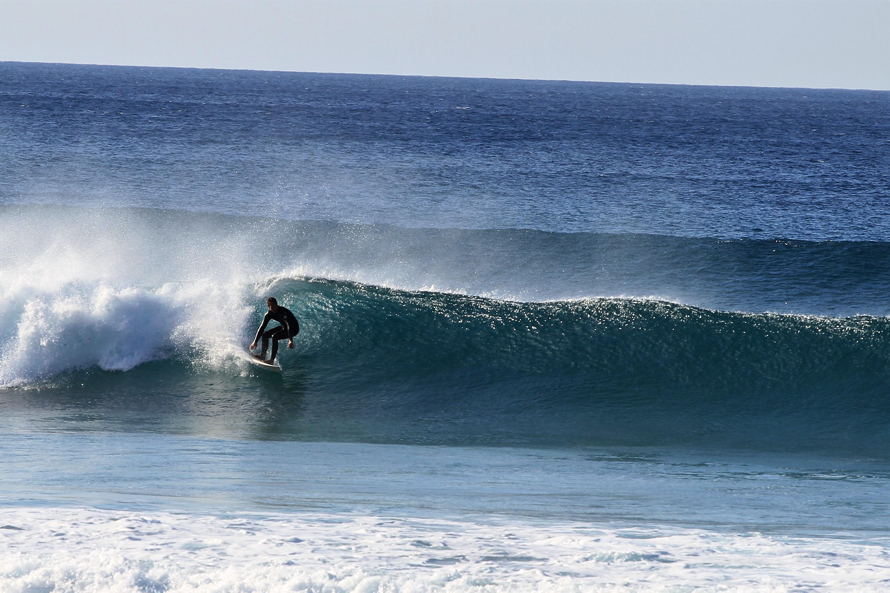 Michael Walzer, Surfen