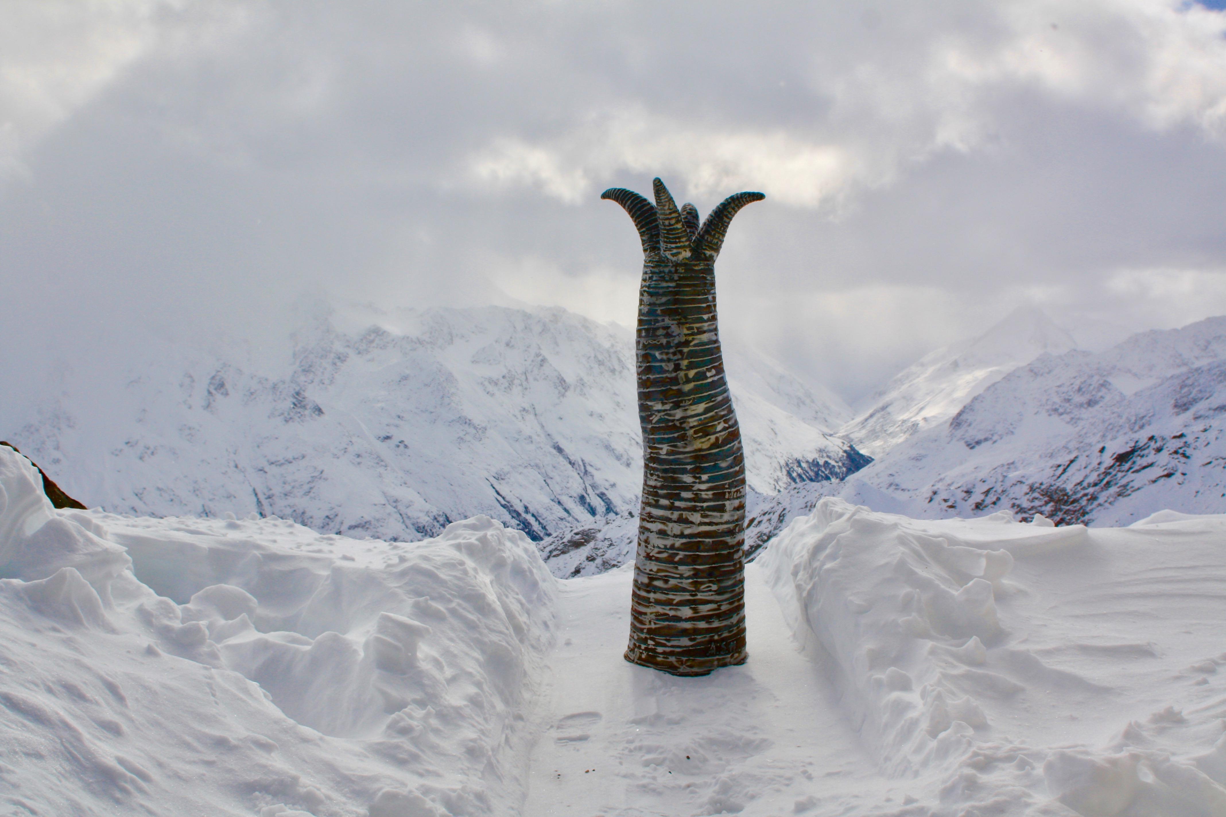 Setzling in den Ötztaler Alpen